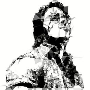 The Web Stylist Polygonal Style