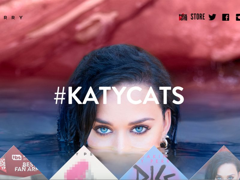 KatyPerry.com-built-with-WordPress