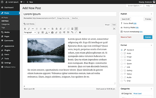 wp-visual-editor